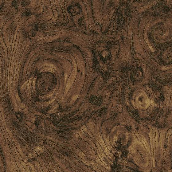 Essences de bois   Dryades   RM 428 70 de Elitis   Revestimientos de paredes / papeles pintados