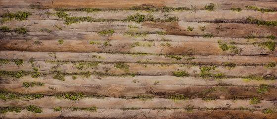 Baobab Moss by Artstone | Composite panels
