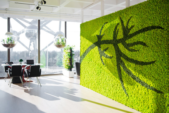 Green Wall Lichen by Greenmood | Living / Green walls