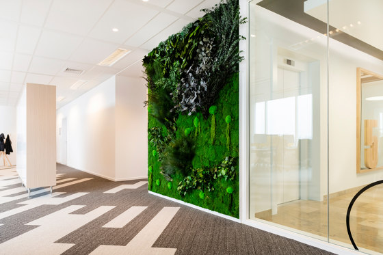 Green Walls Sparse Forest by Greenmood | Living / Green walls