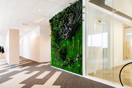 Green Walls Sparse Forest di Greenmood | Pareti vegetali
