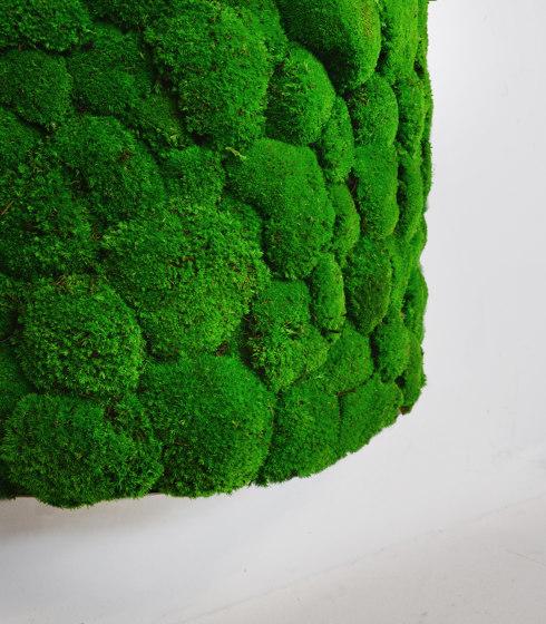 Pillar by Greenmood | Living / Green walls