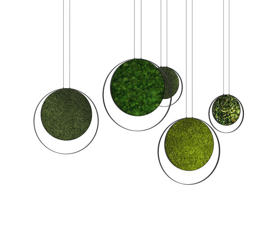 Rings by Greenmood | Sound absorbing objects