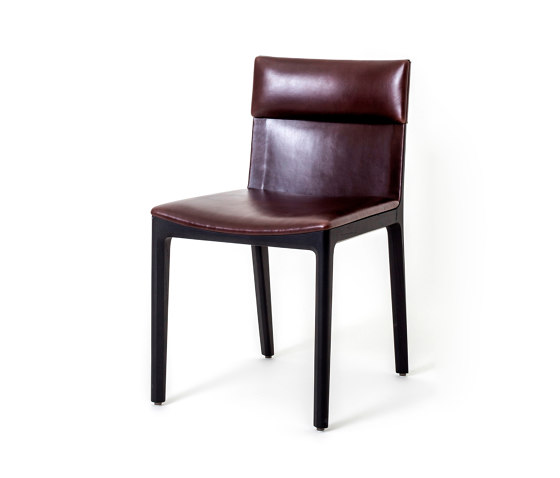 Taylor Dining Chair by Stellar Works | Chairs