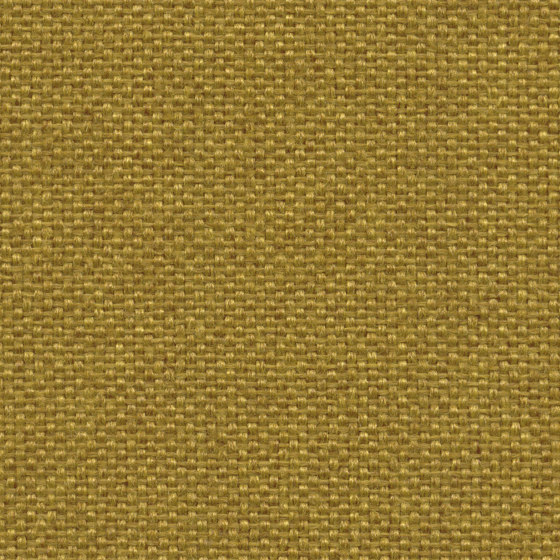 King L Kat | 006 | 3030 | 03 by Fidivi | Upholstery fabrics