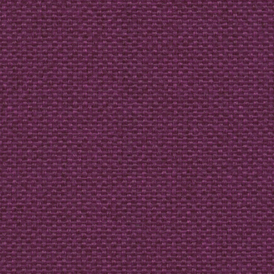 King L Kat | 015 | 5014 | 05 by Fidivi | Upholstery fabrics