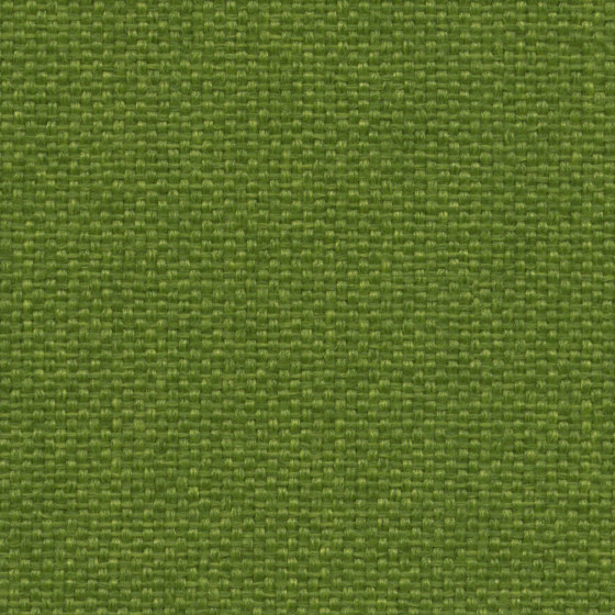 King L Kat | 024 | 7019 | 07 by Fidivi | Upholstery fabrics