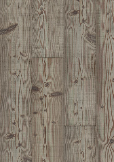 FLOORs Softwood Larch Saloon rustic by Admonter Holzindustrie AG | Wood panels