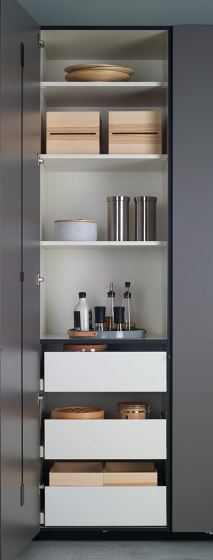 Accessories and equipment for tall units and glass door units by Santos | Kitchen organization