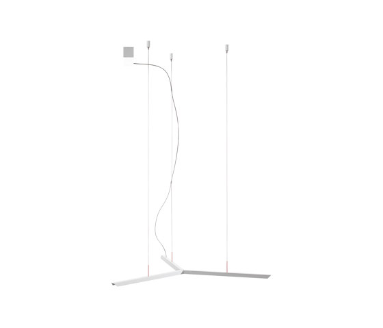Lineal Y | Suspension lamp by Carpyen | Suspended lights