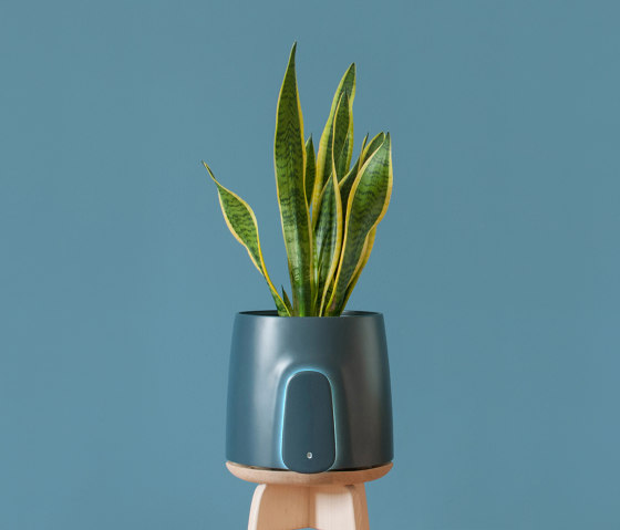 Natede Blue by Vitesy | Plant pots