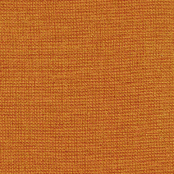 Gypsies II | LI 755 39 by Elitis | Drapery fabrics