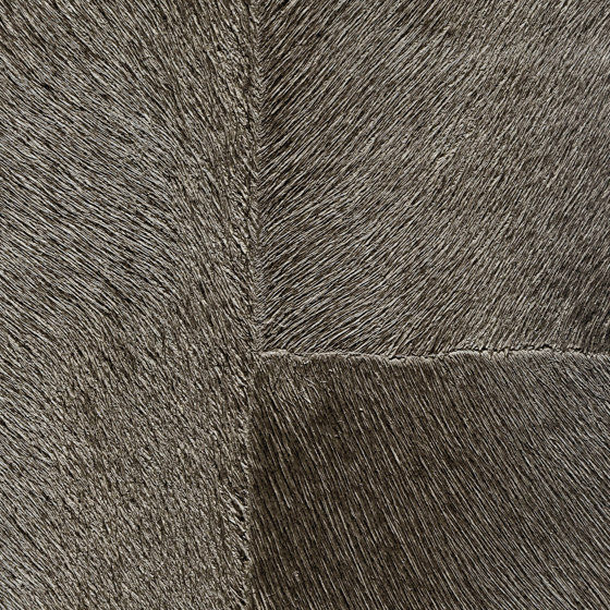 Indomptée | Appaloosa HPC  | CV 113 14 de Elitis | Revestimientos de paredes / papeles pintados