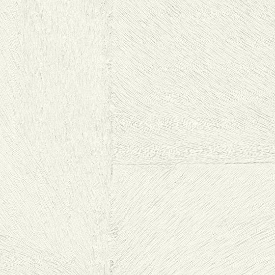 Indomptée | Appaloosa HPC  | CV 113 18 di Elitis | Carta parati / tappezzeria