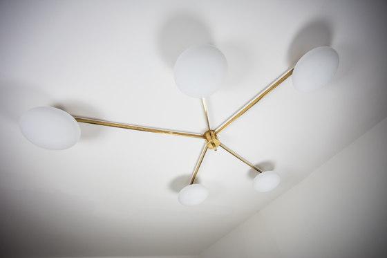 Stella Starfish de DESIGNforMACHA | Lámparas de pared