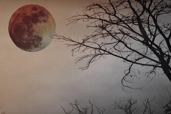 Full Moon 03 by INSTABILELAB | Wall coverings / wallpapers