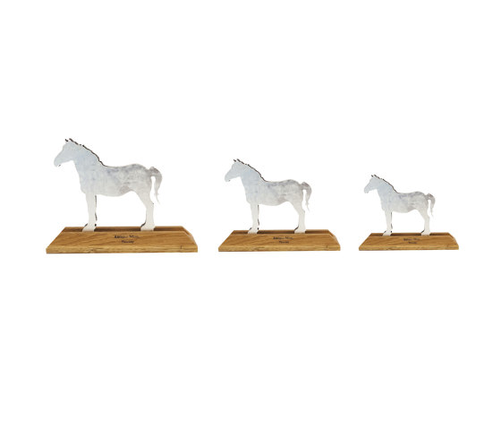 Animals | Horse by Antique Mirror | Objects