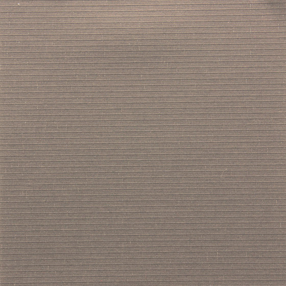 Screen Natural Silence - 1% Metallized by Coulisse | Drapery fabrics