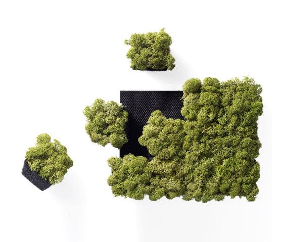 Pixel by Nordgröna | Living / Green walls