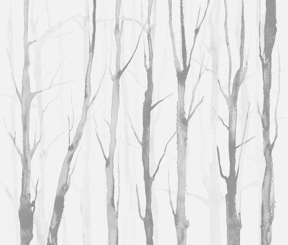 Alberi Zen Light Grey by TECNOGRAFICA | Wall art / Murals