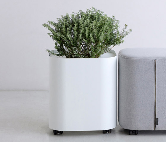 LOAF | Planter by By interiors inc. | Plant pots
