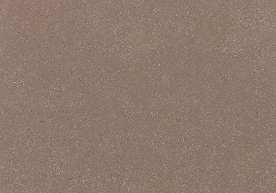 öko skin | FL ferro light walnut by Rieder | Concrete panels