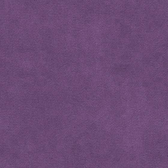 Henry | Colour Grape 437 di DEKOMA | Tessuti decorative