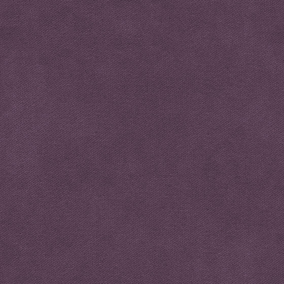 Henry | Colour Pourple 433 di DEKOMA | Tessuti decorative