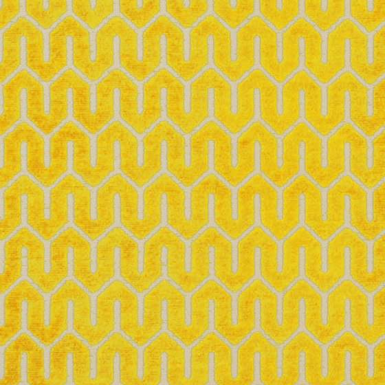 Tunis | Colour Honey 876 by DEKOMA | Drapery fabrics