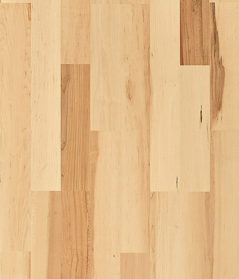 Lodge | Hard Maple Summer by Kährs | Wood veneers