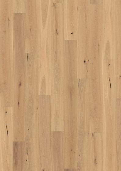 Piazza | Oak CD White 11 mm by Kährs | Wood flooring