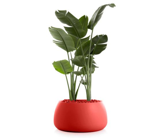 Gobi Plant Pot 3 by Diabla | Plant pots