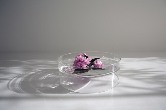 float large shallow bowl by molo | Vases