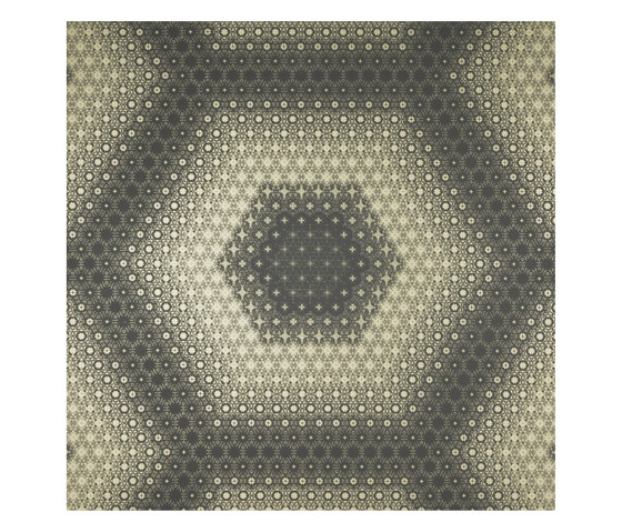 Graphic | Hexagon by Pure + FreeForm | Metal sheets