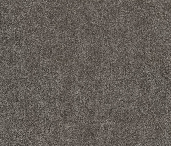 Superior 1064 - 5X81 by Vorwerk | Wall-to-wall carpets