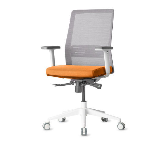 Work | Bodi by AMQ Solutions | Office chairs