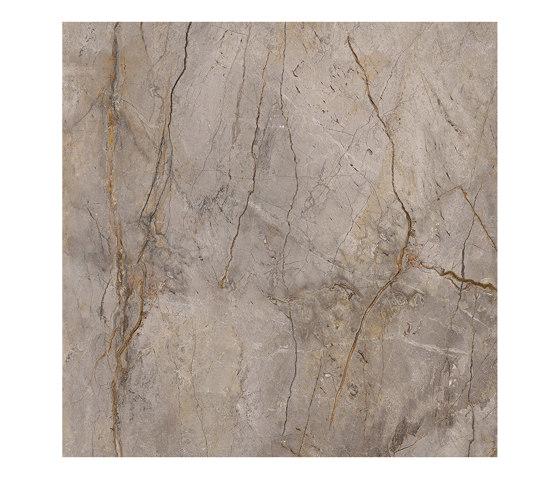 Wild Forest Grey von Apavisa | Keramik Fliesen