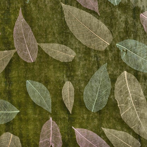 Decoration by natural materials   W17 by Caneplex Design   Wall coverings / wallpapers