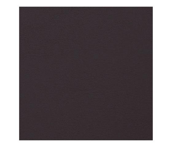 Allante | Espresso by Morbern Europe | Faux leather