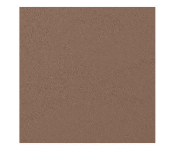 Allante   Tumbleweed by Morbern Europe   Faux leather