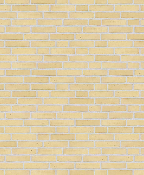 Classica | RT 207 Yellow by Randers Tegl | Ceramic bricks