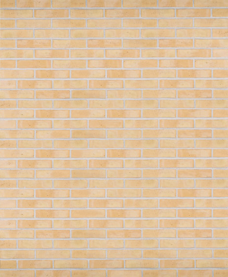 Classica | RT 210 Yellow with flicker by Randers Tegl | Ceramic bricks