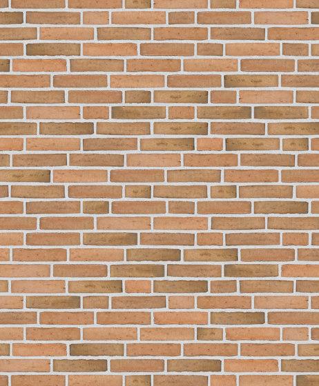 Classica   RT 433 Golden Vesterhav reduced by Randers Tegl   Ceramic bricks