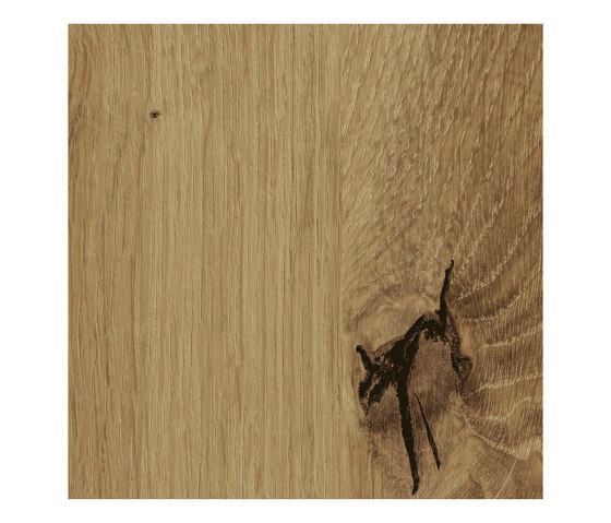 Artisan Oak by Pfleiderer | Wood panels