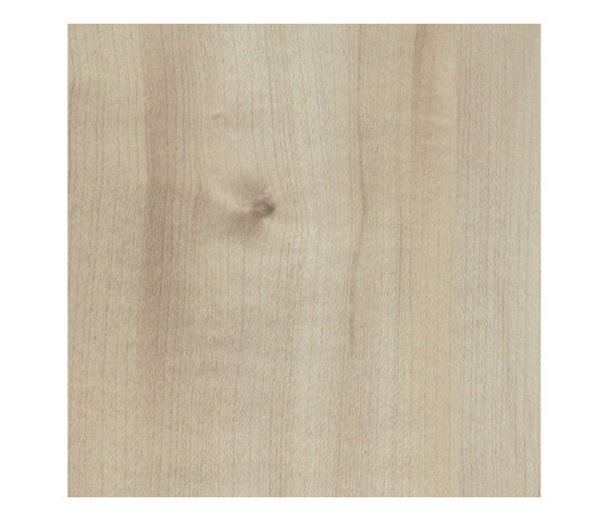 Agostino Maple by Pfleiderer | Wood panels