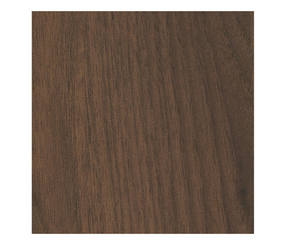 Okapi Walnut by Pfleiderer | Wood panels