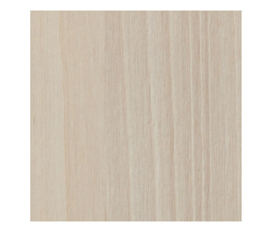 Brushed Alnus by Pfleiderer | Wood panels
