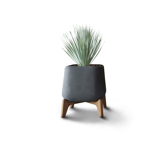 Terra Square by Indigenus | Plant pots