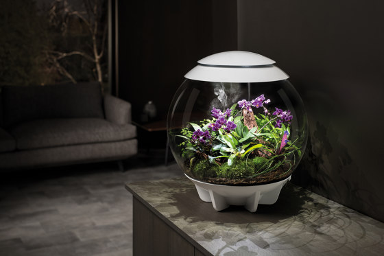 biOrb Air by Oase | Objects
