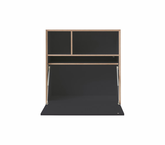 Vertiko cabinet furniture module CPL by Müller small living | Shelving
